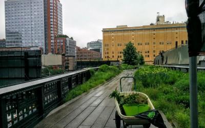 L'éco-gentrification
