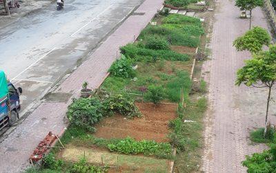 Raconte-moi un terrain – Interview avec Hien Pham – L'agriculture urbaine à Lào Cai (Vietnam)